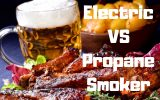 Electric or Propane Smoker